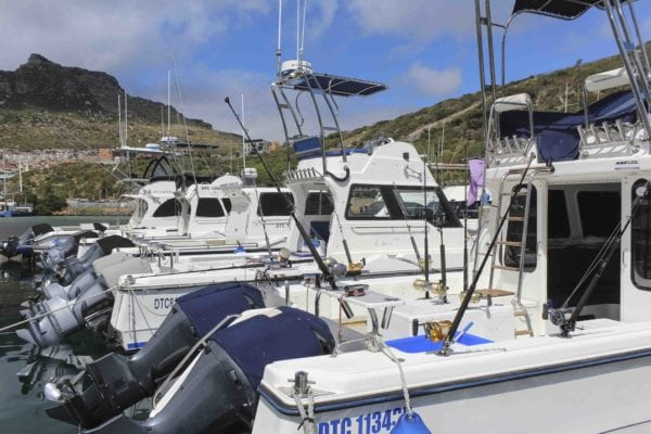 deep sea fishing charters cape town hout bay fishing tuna fishing 31