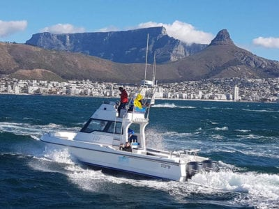 deep sea fishing charters cape town hout bay fishing tuna fishing edit
