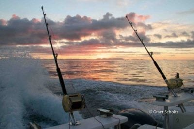 hooked on africa fishing charters hout bay cape town March 2017 - 2