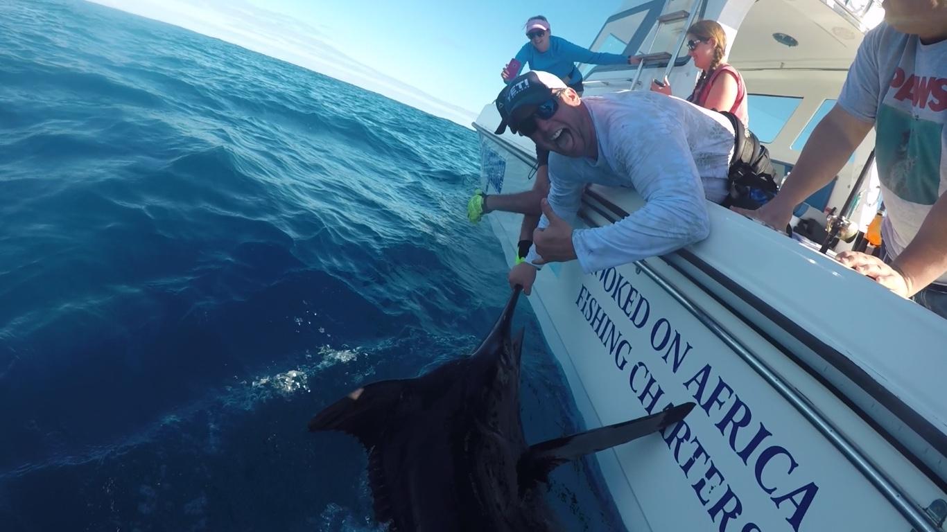 Deep sea fishing charters cape town marlin fishing charters for Deep sea fishing trips