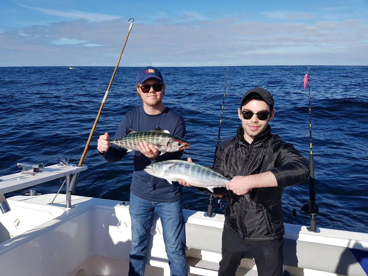 Deep sea fishing charters cape town inshore half day for Deep sea fishing trips