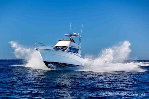 Rodman-deep sea fishing charters cape town 480x320