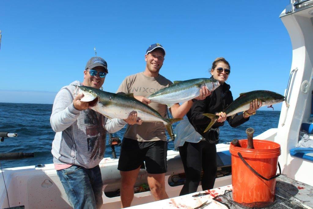 Deep sea fishing charters cape town yellowtail fishing for Put in bay fishing charter