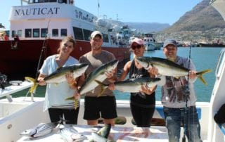 Yellowtail Fishing Cape Town Fishing Charters 04