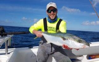 Yellowtail Fishing Cape Town Fishing Charters 11