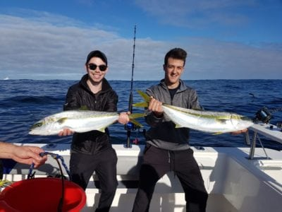 Yellowtail Fishing Cape Town Fishing Charters 12