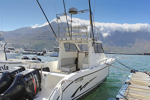 Deep Sea Fishing Charters Cape Town 28ft Sportfisher 7 small