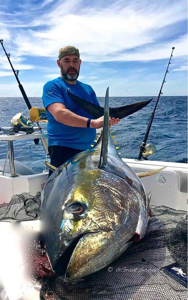 catch big fish deep-sea-fishing-charters-cape-town-hout-bay-fishing-tuna-fishing - Yellowfin Tuna 5
