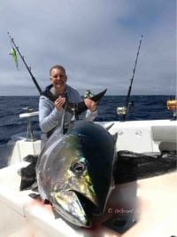 deep-sea-fishing-charters-cape-town-hout-bay-fishing-tuna-fishing - Yellowfin Tuna