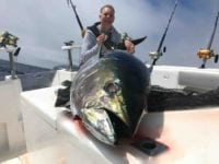 deep-sea-fishing-charters-cape-town-hout-bay-fishing-tuna-fishing - Yellowfin Tuna 1