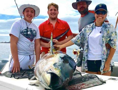 Recent Decent Tuna. It's Yellowfin Tuna Season. Book Now