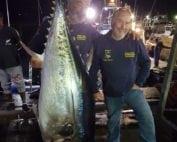 112.4 kg big eye tuna fishing deep sea fishing cape town hout bay fishing charter 1