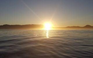 deep sea fishing cape town sunrise hout bay fishing charter 1