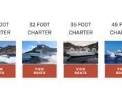 fishing charter boats hout bay cape town