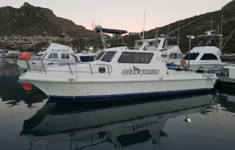 ocean warrior 35 foot cat fishing charter hout bay cape town 1