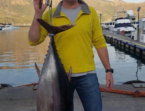 A decent 24.7 Kg Longfin Tuna