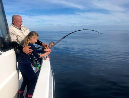 Great mid-winter yellowfin tuna fishing conditions for the family.