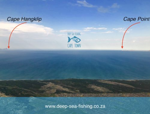 Our location, where and when we fish