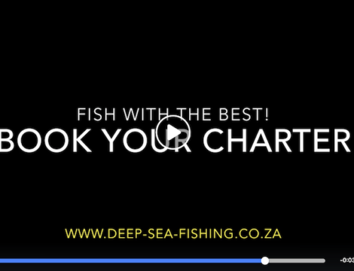 Find out why we are the best deep sea fishing charter company in Cape Town