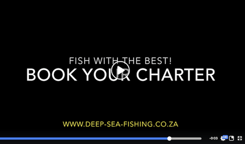 best deep sea fishing charter company in cape town