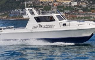ocean warrior 35 foot deep sea fishing charter boat