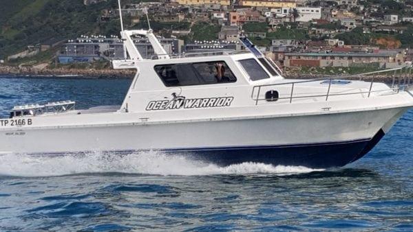 ocean warrior 35 foot deep sea fishing charter boat