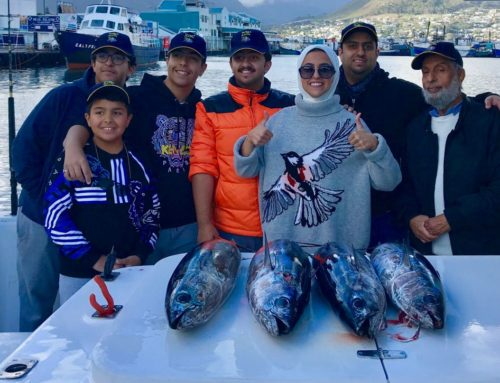 Slender Tuna Caught in July