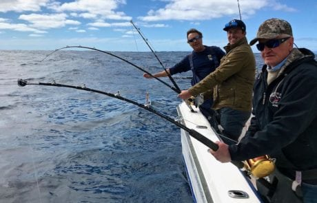 Longfin Tuna Fishing