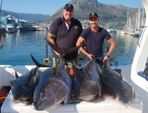 Father & Son Team Land Monster Yellowfin Tuna