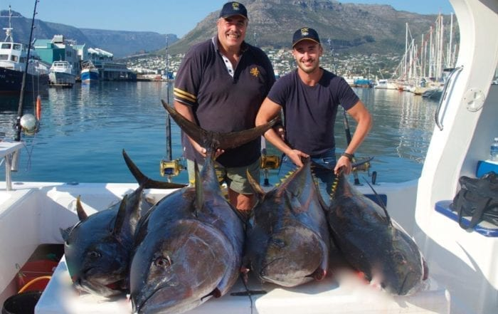 Deep Sea Fishing Yellowfin Tuna Fishing Season Hout Bay Cape Town Fishing Charter 1
