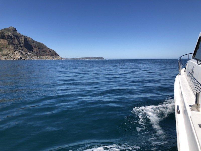 ocean warrior - deep sea fishing charters cape town 2