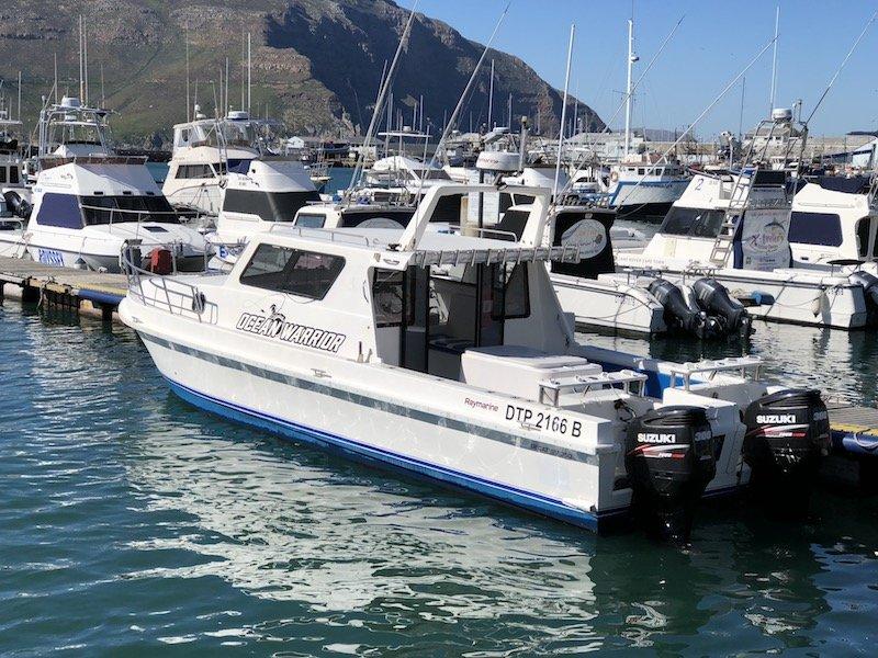 ocean warrior - deep sea fishing charters cape town 3