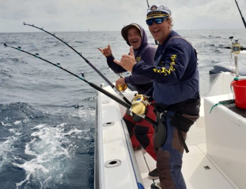Yellowfin Tuna Fishing Season is Officially Here