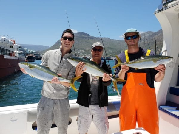 Yellowtail Fishing Hout Bay Cape Town Fishing Charters