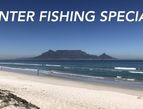 Cape Town Winter Fishing Specials – Watch The Movie Clip