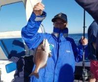 hottentot-fishing-hout-bay-cape-town-deep-sea-fishing-800x960