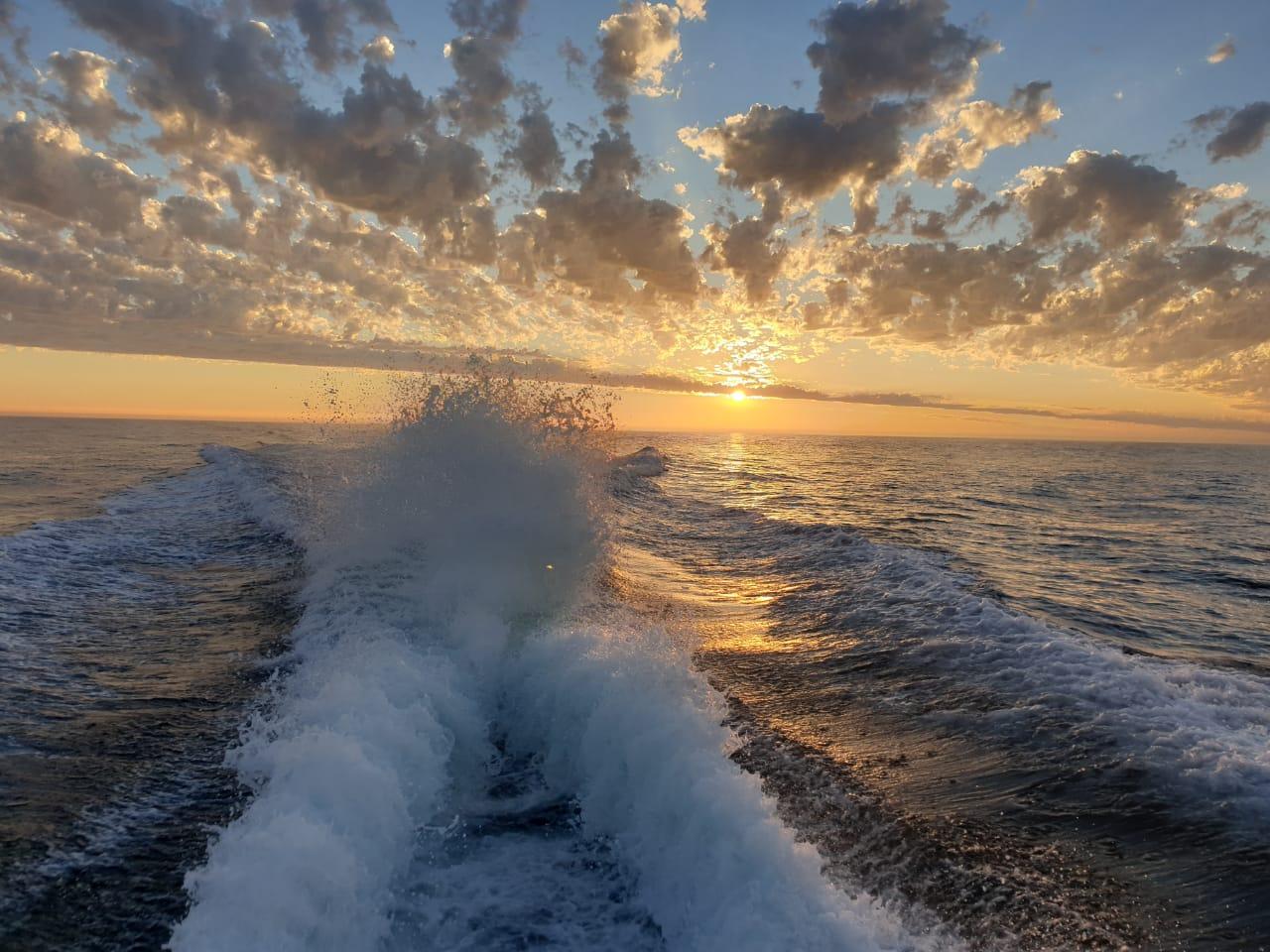 tuna fishing charters cape town 1