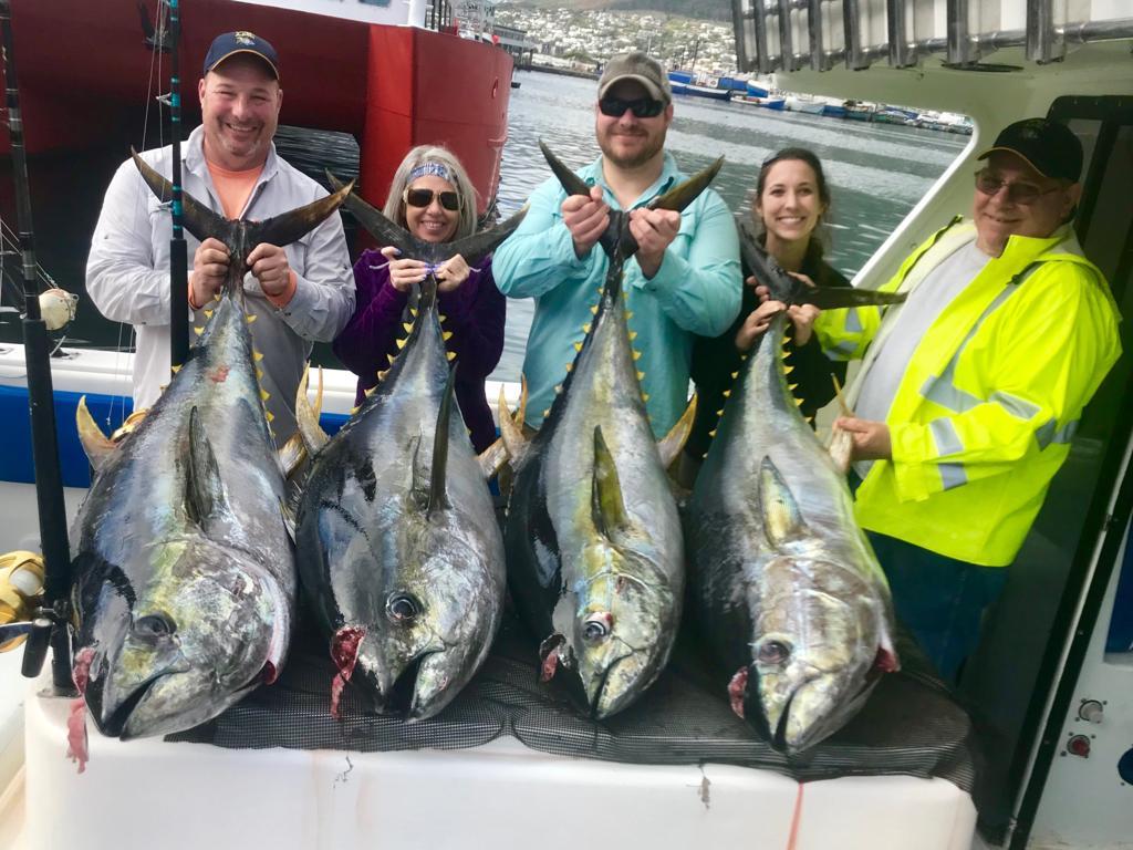 tuna fishing charters cape town 2