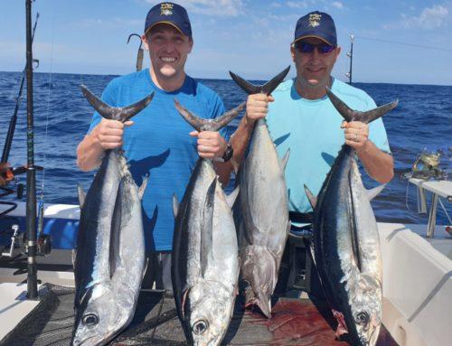 Rocktober Longfin Tuna Action