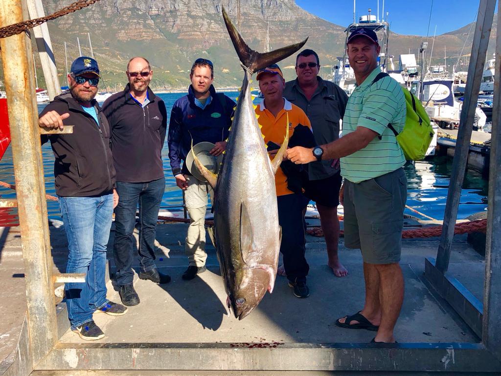yellowfin tuna fishing carters cape town - deep sea fishing charter
