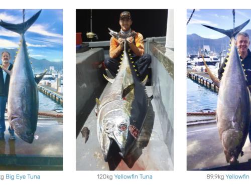 2020 Cape Town Tuna Fishing Big Catch Gallery